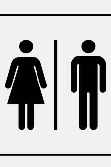 Plan: openbaar toilet voor centrumgebied De Bilt