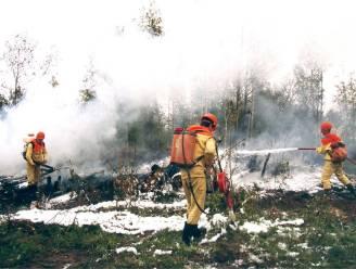 Wetenschappers slaan alarm: 'hittegolf' in Noordpoolgebied zorgt voor smeltende ijskappen, bosbranden en larvenplaag