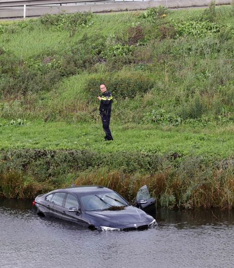 Wesp laat bestuurder zó schrikken dat die met zijn auto in het water belandt
