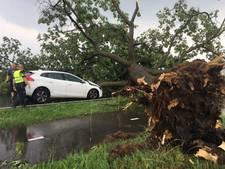 Auto botst op omgevallen boom tijdens noodweer