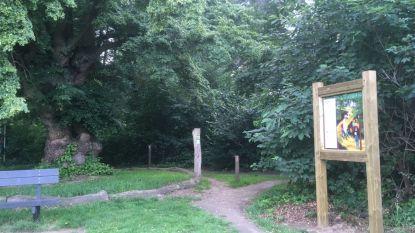 Bos aan Kapellekensboom omgevormd tot buurtbos