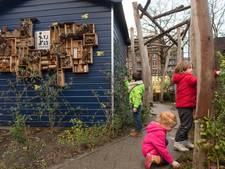 Stop pesten, 'vergroen' het schoolplein