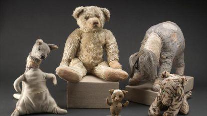 """Britten willen originele Winnie The Pooh-knuffelberen weer in eigen land: """"Ze worden al 80 jaar gegijzeld door New York"""""""