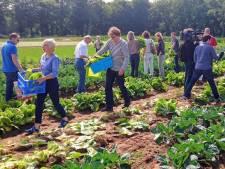 Baas zijn over je eigen voedsel: Tilburgs initiatief voor Herenboerderij