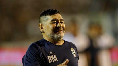 """Maradona ontketent revolutie in La Plata, maar al wat hij doet wordt nog steeds onder vergrootglas gelegd: """"Grootste uitdaging in mijn leven"""""""