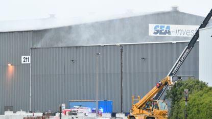 Grote chemische brand in Antwerpse haven onder controle:  geen rook meer uit hangar en perimeter opgeheven