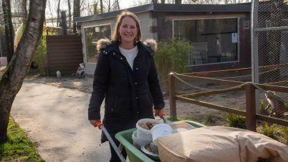 """Sarah (34), eigenares van dierenpark Harry Malter: """"Voor het eerst in bijna dertig jaar openen we niet bij de start van de paasvakantie"""""""