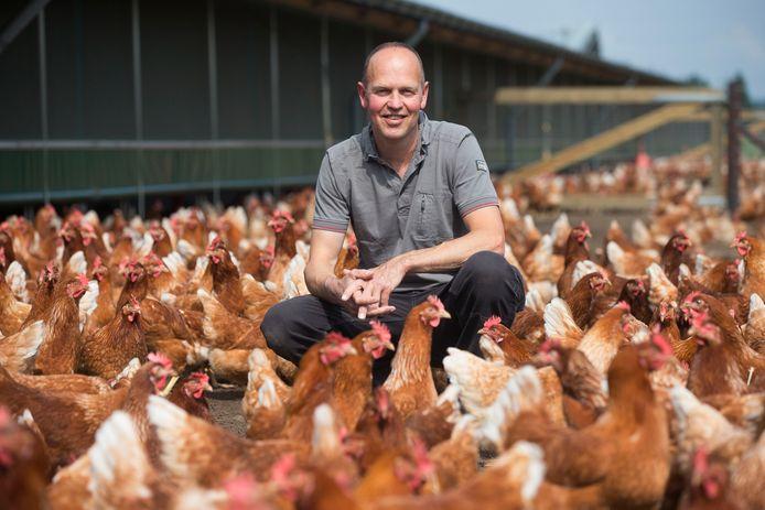 Anton van Steenbergen tussen zijn biologische kippen.