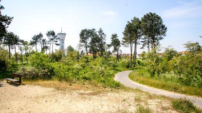 Planten nooit zo droog: opgelet voor brandgevaar in Knokke-Heistse natuurgebieden