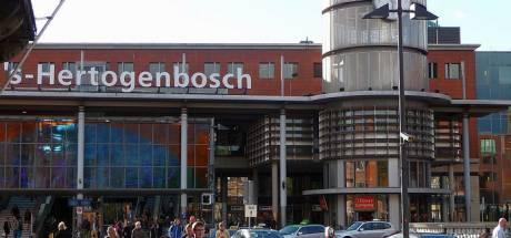 Minder treinen van en naar Den Bosch door seinstoring