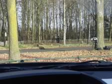 Bonnenregen in Eindhoven: ruim duizend bestuurders te hard op Marathonloop