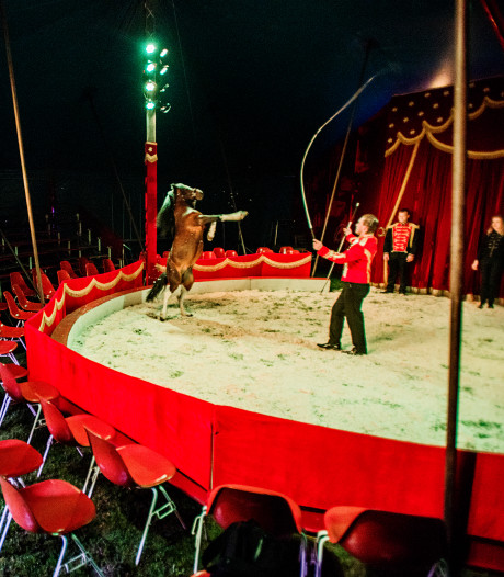 Oeps, circus toch op een andere plek