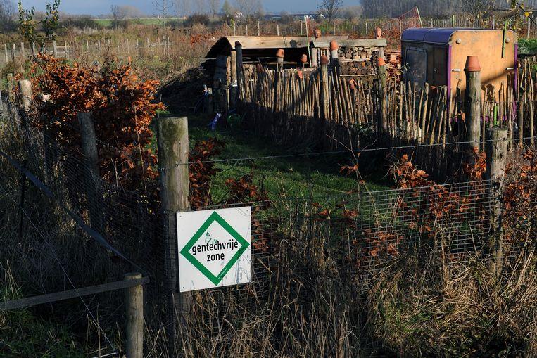 De tuin van boer Koekoek in de Nijmeegse wijk Ooyse Schependom. Nijmegen is de eerste Nederlandse gemeente met een zogenoemde gentechvrije zone. Beeld Marcel van den Bergh