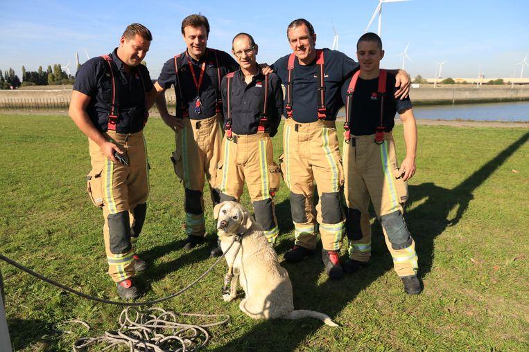 Nog een foto van de hond met haar redders.