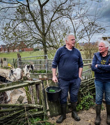 Udenhouts paar dreigt door onteigening in de knel te komen: 'Ze pakken onze lust en leven af'