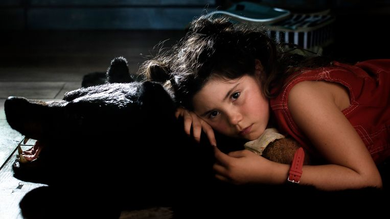 Bears Love Me! van Eva Zanen. Beeld