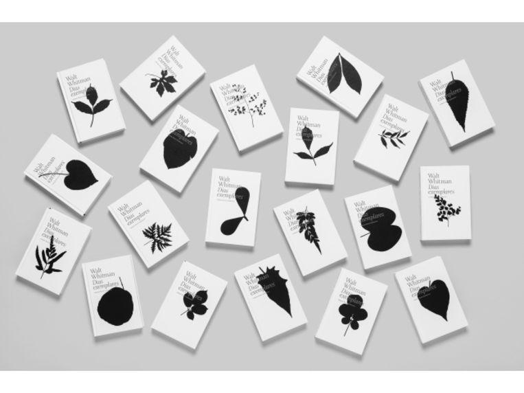 Ontwerper Thiago Lacaz maakte duizend verschillende omslagen voor Dias exemplares van Walt Whitman, eveneens bekroond in 50 Books 50 Covers.  Beeld Carambaia