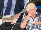 Tweeduizend haringen voor Hengelose ouderen