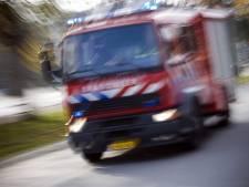 Brand in tuinhuisje Rotterdams volkstuincomplex Eigenhof