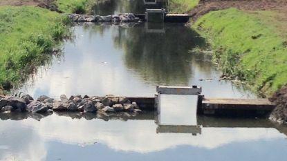 Vispasseerbare stuw beschermt Langemeersen tegen uitdroging