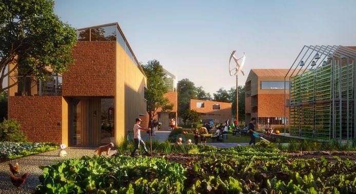 Impressie van de Slimme Wijk in Helmond, offcieel Brainport Smart District geheten. Hier oogsten bewoners in hun eigen moestuin.