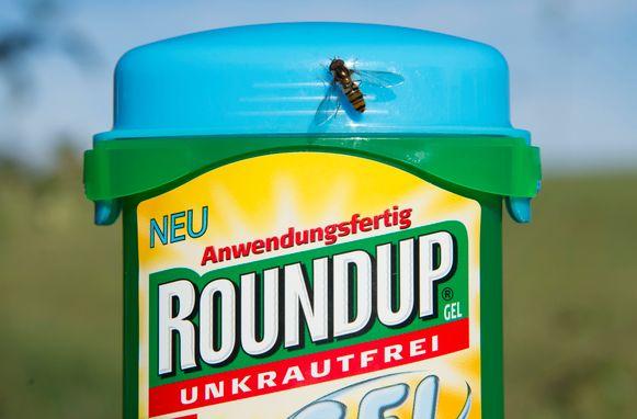 Bayer is het moederbedrijf van Monsanto. Dat werd veroordeeld tot het betalen van 290 miljoen dollar schadevergoeding aan een Amerikaanse tuinier die kanker kreeg door de onkruidverdelger Roundup.