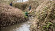Provincie houdt voorjaarsschoonmaak in waterlopen Dijlebekken en Demerbekken