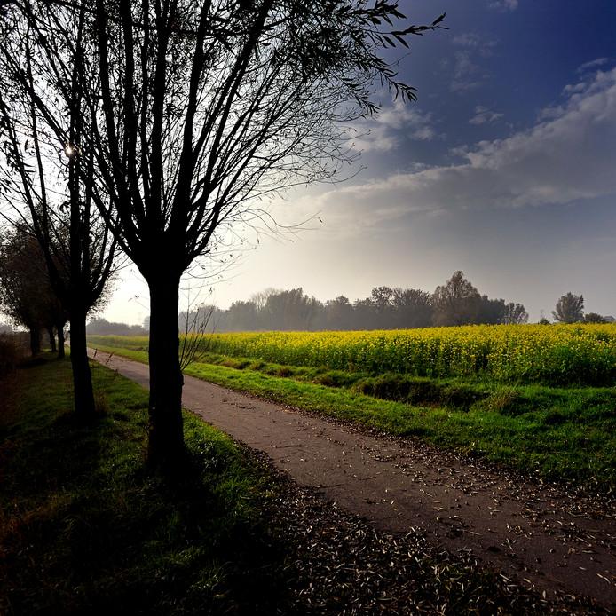 Herfst in het buitengebied van Etten-Leur.