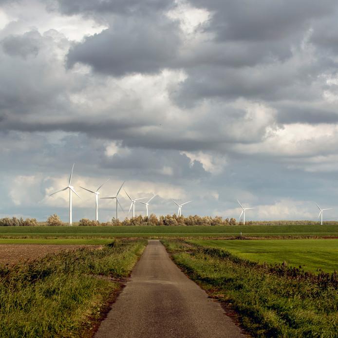 Windmolens aan de Bandijk bij Halsteren, gezien vanaf Tholen.