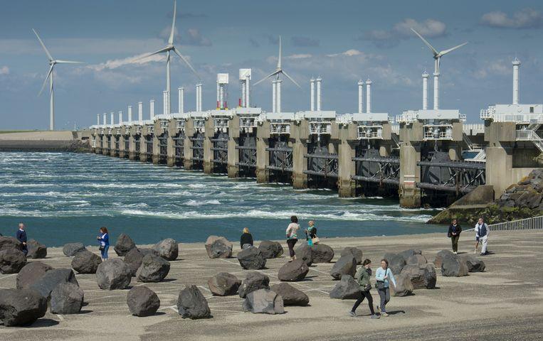 De Oosterscheldekering is 8 kilometer breed, maar de pijlers maken het voor de bultrug lastig om terug te zwemmen.