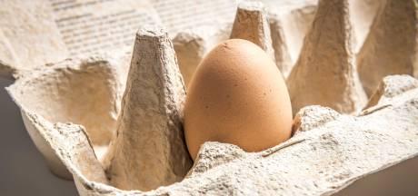Niet meer te koop in de supermarkt: waar zijn de kleine eierdozen gebleven?
