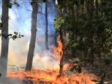 Twee brandhaarden veroorzaken grote bosbrand in Helmond