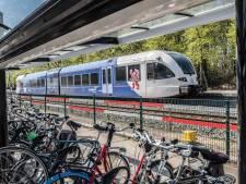 Arriva haalt storingsgevoelige treinen op de Maaslijn voorlopig naar de kant