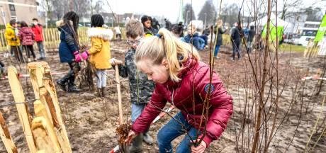 Roosendaal krijgt er nog eens 402 nieuwe bomen bij