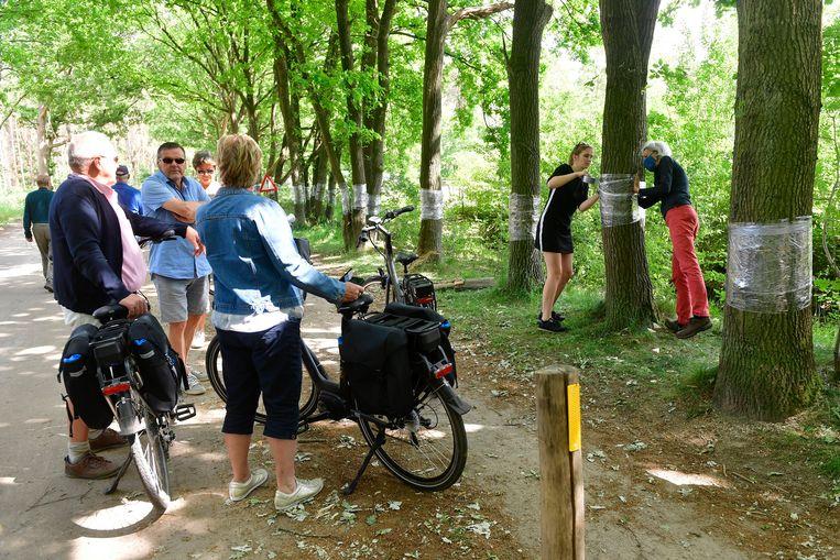 Fietsers komen een kijkje nemen naar de reddingsoperatie voor de beschadigde bomen.