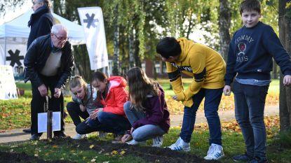 Leerlingen van de Middenschool planten 550 bloembollen om hun speelplaats te vergroenen