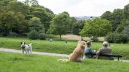 Dudenpark twee weken dicht voor onderhoud van bomen