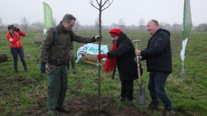 Katrien Devos helpt MJR Team met boomplantactie