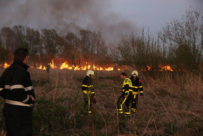 Brandweerlieden bestrijden een natuurbrand in Werkendam.