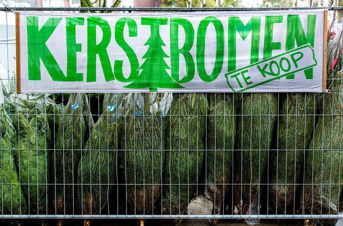 Keuzestress: het tuincentrum verkoopt niet zomaar bomen, maar een 'Nordmann', een 'blauwspar' of zelfs een 'picea abies'.