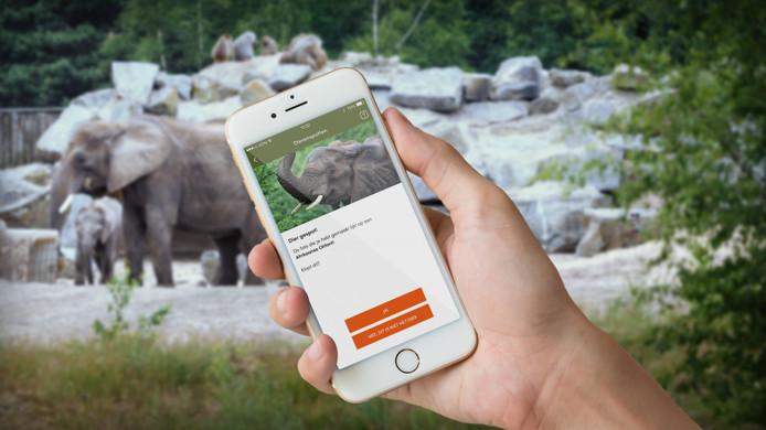 Dieren spotten met de nieuwe app.