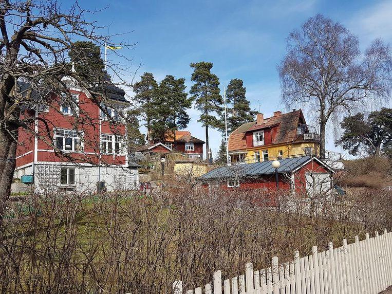 Vrijstaande huizen in Duvbo. Beeld Sterre Lindhout
