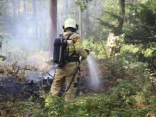 Bosbrandje in Nijkerk snel onder controle