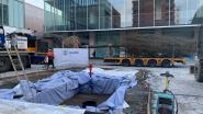 Moeraseik van 12 ton maakt Turnova groener