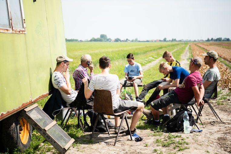 Lunch bij de bollenvelden bij het West-Friese Obdam. Beeld Katja Poelwijk