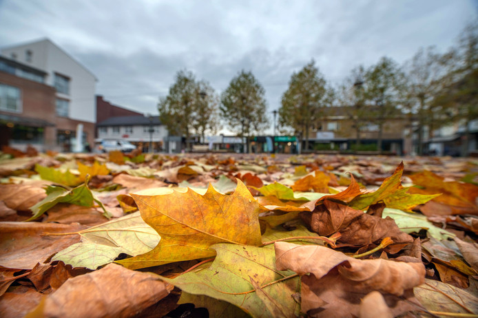 De gemeente Beuningen laat vaker bladafval opruimen.