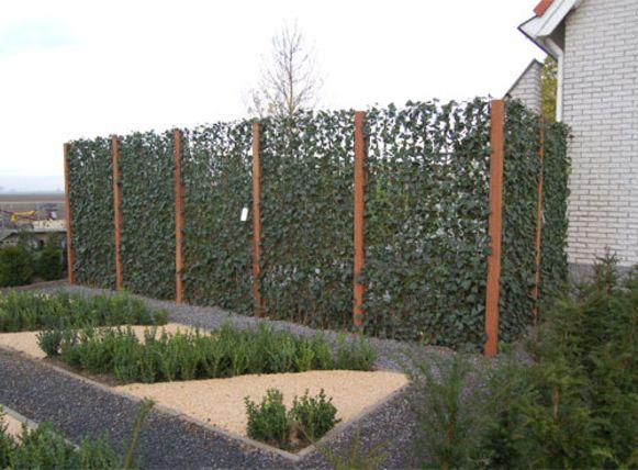 Het principe van kant-en-klare hagen is simpel: de haag is al voorgekweekt en wordt in panelen geleverd.
