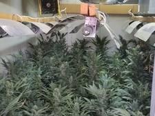Man aangehouden voor growshop en hennepkwekerij in Tilburg