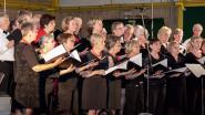 Wakkens koor Amicitia zingt zondag Last Post onder Ieperse Menenpoort