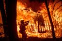 Een brandweerman blust 6 november bij een huis in Magalia, Californië